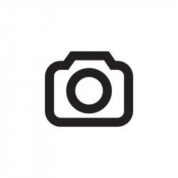 Rolls Royce in Trailer.JPG